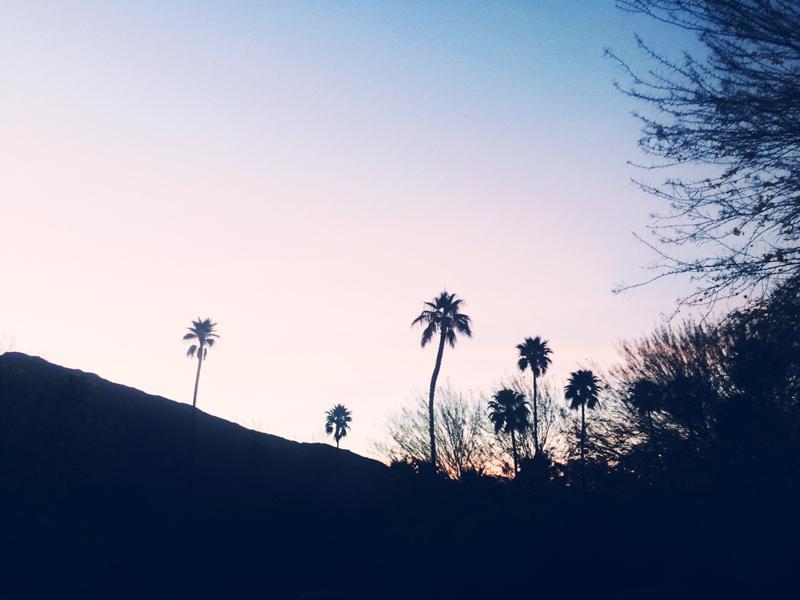 Palm Springs Sunset, Ella Frances