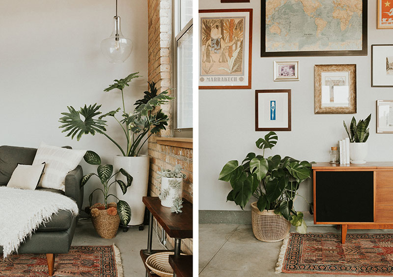 Inspired Interview Plants By Her