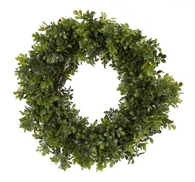 Fresh Boxwood Wreath - 24